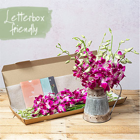 flowers through the letterbox